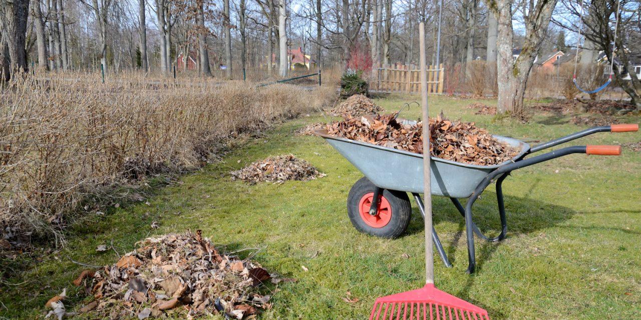 Garden jobs